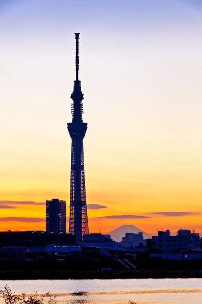 富士山と東京スカイツリー 11121049.jpg