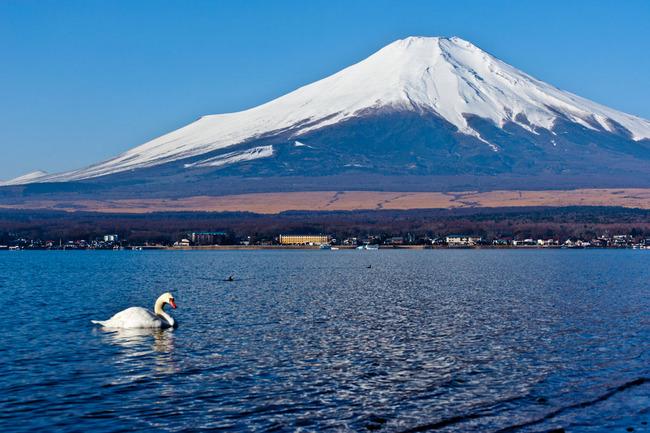 山中湖周の富士 09022228.jpg