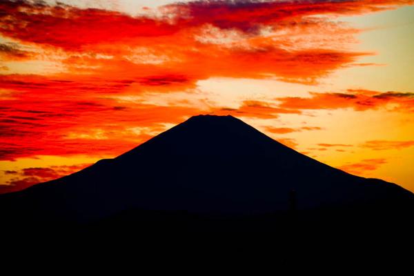 東戸塚川上から富士 06100819.jpg