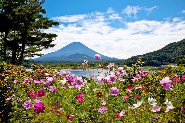 精進湖の秋の風 09091307.jpg