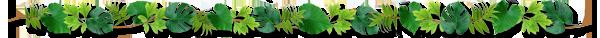 観葉植物の枠.png
