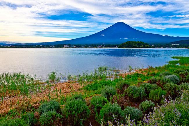 河口湖大石公園の朝 10090740.jpg