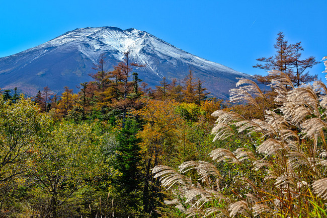滝沢林道の秋富士 09101105.jpg