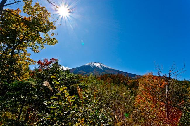滝沢林道の秋富士 09101112.jpg